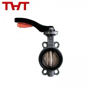 Replaceable soft seat wafer butterfly valve